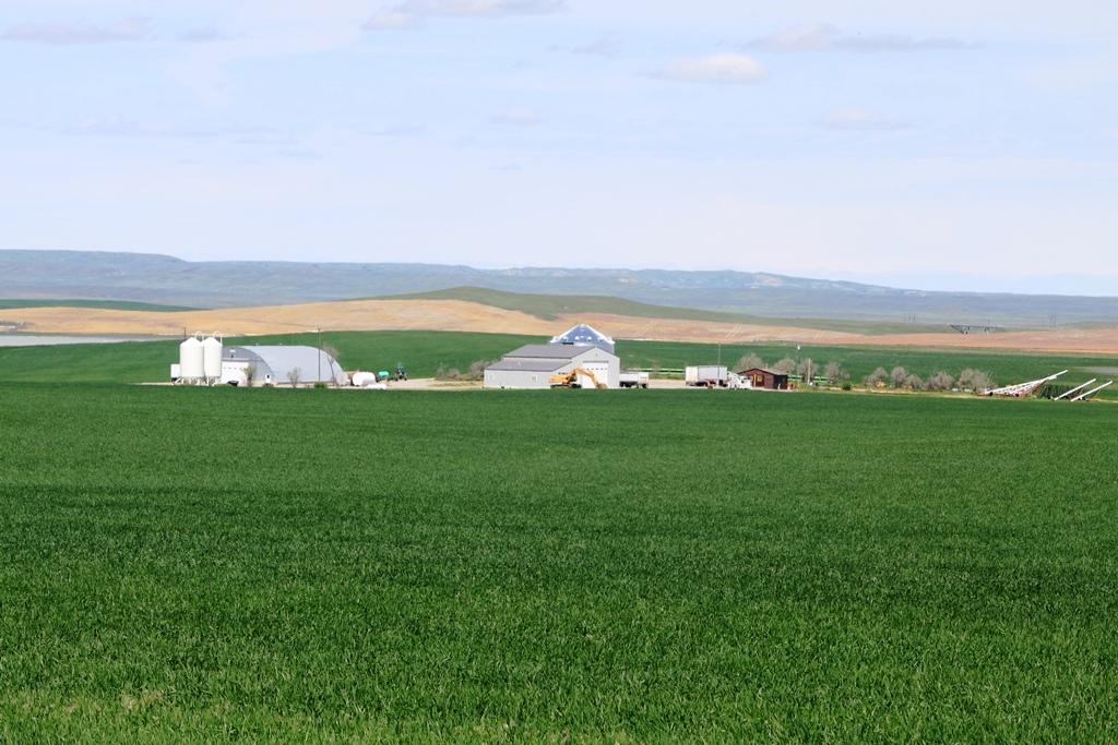 Toluca-Farm