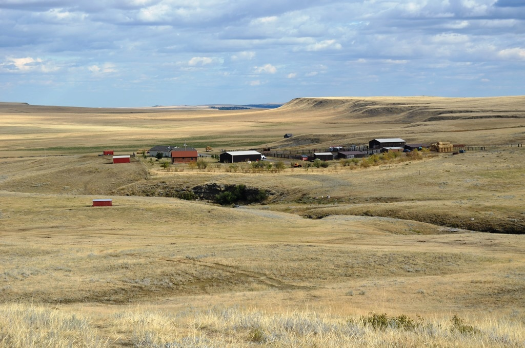 spring-coulee-ranch