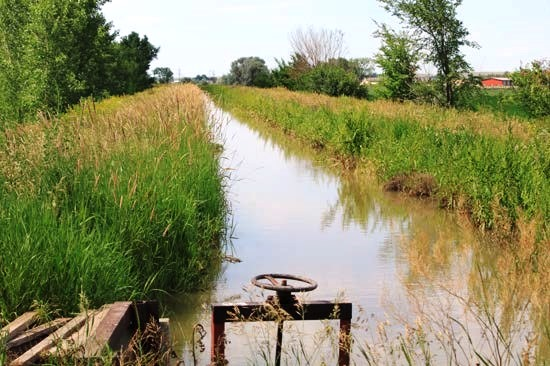Sidney-Irrigated-Land